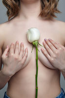Female body with hands covers a breast and with white rose.