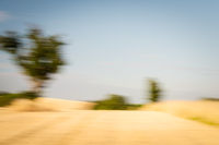 Abstract blurred landscape with tree