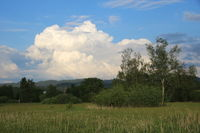 Dramatic cumulus cloud over green meadows and trees near Wetzikon, Zurich.