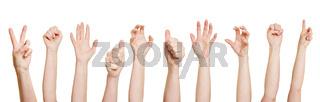 Viele Hände machen verschiedene Gesten