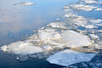 Ice floes on the river Elbe near Magdeburg in Germany in winter