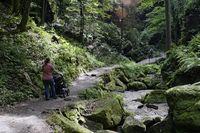 Wanderweg Uttewalder Grund