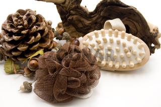 Massagebürste und Schwamm mit Kiefernzapfen