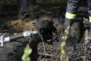 Symbolbild Waldbrandsaison