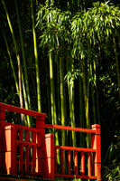 Red bridge and bamboo