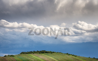 Vineyard on a hill near Jois with dramatic sky above