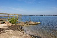 Coast Dutch lake IJmeer near Muiden with fence and stones