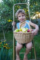 Little boy in garden