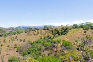 Panama Gualaca, tropical hilly vegetation