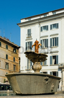 Fountain at Piazza Farnese, Rome, italy