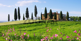 Toskana Haus mit Blumen - Tuscany house and flowers 04