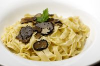 schwarzer Trüffel auf hausgemachter Pasta