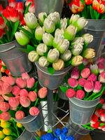 Wooden tulips in the shop in Volendam.
