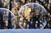 Freezing soap bubbles with ice crystals on snow, Witten, North Rhine-Westphalia, Germany, Europe