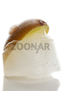 Kiwi frozen in ice closeup