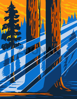 The Giant Sequoia National Monument Located in the Southern Sierra Nevada in Eastern Central California USA WPA Poster Art