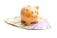 Euro banknotes and piggy bank