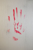 blood smeared bloody handprint on frosted glass window