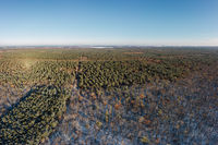 aerial drone view on winter forest with sun