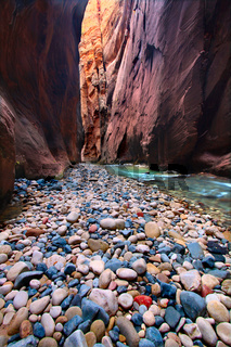 Narrows of the Virgin River