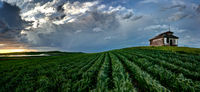 Summer Storm Canada