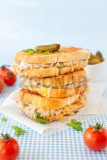 Sandwich mit Thunfisch und Kaese