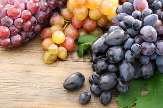 Bunches of black grapes and pink.