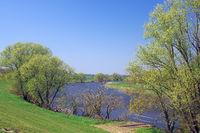 Alt Elbe bei Penkefitz.jpg