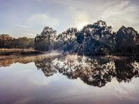Foggy Melbourne Morining in Australia