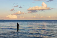Coast fishing