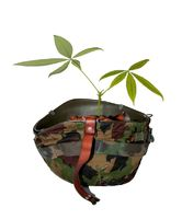 Soldier helmet with plant