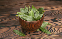 Fresh bay leaves in wooden bowl on dark background