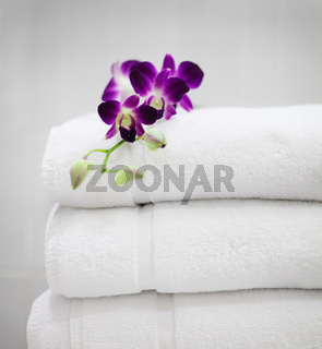 Purple orchid on white towels