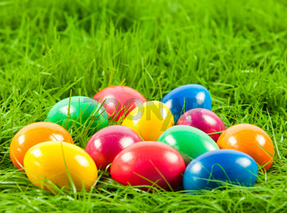 Easter eggs in Fresh Green Grass .