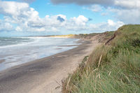 Beach at the North Sea coast with dunes near Norre Vorupor in Jutland, Denmark