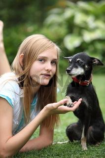 Loving little dog and owner