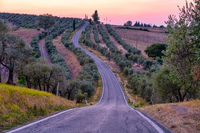 Beautiful cypress lined road in the light of the setting sun, curved road in the hills of Toscane , Tuscany Italy