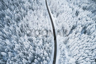 Beautiful winter forest and road. Aerial view