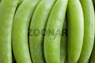 green peas pods
