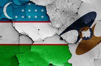 flags of Uzbekistan and Eurasian Economic Union painted on cracked wall