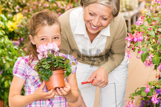 Garden shop child with grandmother smell cyclamen