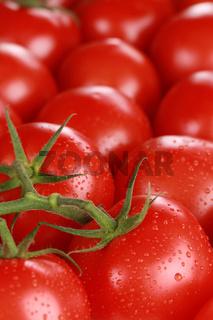 Tomaten als Hintergrund und mit Textfreiraum