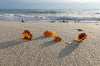 Amber on the beach on the Danish North Sea coast