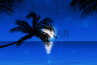Blue Tropical Sunset