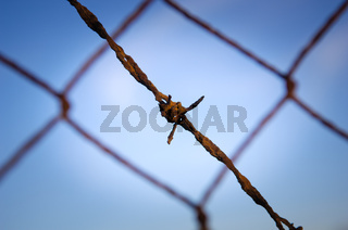 Barbed Wire Close