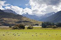 mount aspiring, Newzealand