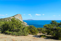 Summer mountain seascape - lush bushes on a high rock against the background of the sea and the blue sky going to the horizon