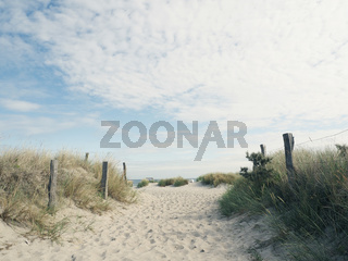 Beautiful pathway to the beach on a sunny day, Baltic Sea
