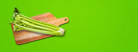 Celery branch bunch on a cutting board. Isolated on green banner background