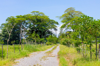 Costa Rica, flat path towards the forest